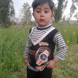 Ahmad Afridi profile photo