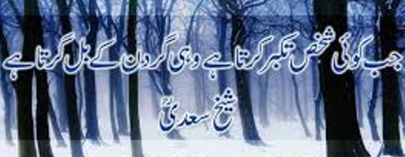 Nasir Ali Shakir cover photo